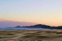 Agate beach dunes and offshore fog (Lostinplace) Tags: oregon sand dune yaquina newport lighthouse agatebeach surf ocean