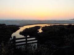 Agate beach (Lostinplace) Tags: fromnikon oregon newport beach surf sunset fence stream agatebeach