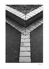 This Way (radspix) Tags: yashica 230 af 2885mm kyocera f3445 arista edu 200 pmk pyro