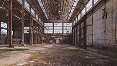room.for.growth (jonathancastellino) Tags: hamilton abandoned derelict decay ruin ruins leica q2 tank factory westinghouse entropy plant regreening window room space beam