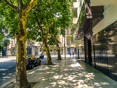 Argentina_28_12_2018_055 (Nekrasoff Oskar) Tags: argentina buenosaires building capital cemetery crypt grave green heaven statecapital street town trees tumba