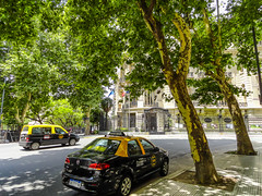 Argentina_28_12_2018_056 (Nekrasoff Oskar) Tags: argentina buenosaires building capital cemetery crypt grave green heaven statecapital street town trees tumba