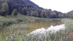 Barni – Km. 15 – 18/08/19 (Londrina92Bis) Tags: barni como concadicrezzo lombardia lombardy water lake fiasp tapsciata outdoor nature