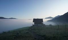 DSC00021 (Bergwandern Alpen) Tags: alpen alps bergwandern hiking berglandschaft nebelmeer morgendämmerung berghütte ybrig oberiberg buoffenalp wolkenmeer fog