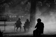 Relax in the Steam (Aphélie) Tags: bw black white noir blanc jardin luxembourg garden paris