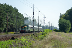 SU42-536 (fzadam97) Tags: su42 536 turkol wolsztyn specjalny pociąg stonka d29 3 e20 chlastawa zbąszyń