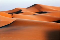 Imperial Sand Dunes (Sandra Lipproß) Tags: imperialsanddunes algodonesdunes california usa westcoast sand dunes desert travel landscape desertscape tatooine yumadesert sky waves pattern ripples goldenhour goldenlight shadows