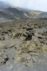 Rocky fungus (SAN_DRINO) Tags: etna rocks pile green grass extreme condition lava vulcan italy