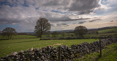 countryside (Phil-Gregory) Tags: derbyshire d7200 trees tokina1120mmatx tokina walls fence clouds countryside cloudscape colour green wideangle ultrawide peakdistrictderbyshire dales monsaldale scenicsnotjustlandscapes sky
