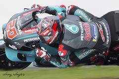 Fabio Quartararo #20 (FocusedWright) Tags: race racing uk england bike bikes motogp silverstone motorbike motorcycle track tracks circuit fabioquartararo 20 petronas
