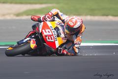 Marc Marquez #93 (FocusedWright) Tags: race racing uk england bike bikes motogp silverstone motorbike motorcycle track tracks circuit 93 marc marquez marcmarquez crash crashed crashing