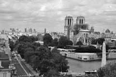 Paris : La Défense & Notre Dame (Philippe Haumesser (+ 8000 000 view)) Tags: ville city noiretblanc blackandwhite monochrome notredamedeparis ladéfense paris nikond7000 nikon d7000 reflex 2019 seine eau water nuages clouds arbres trees route street