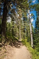 IMG_9524 (RegiShu) Tags: 2019 camping oregon summer us usa wallowalakestatepark joseph unitedstatesofamerica
