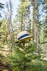 IMG_9528 (RegiShu) Tags: 2019 camping oregon summer us usa wallowalakestatepark joseph unitedstatesofamerica