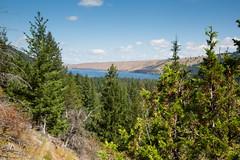 IMG_9548 (RegiShu) Tags: 2019 camping oregon summer us usa wallowalakestatepark joseph unitedstatesofamerica