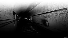 le sens de la marche (Un jour en France) Tags: canoneos6dmarkii canonef1635mmf28liiusm noiretblanc noiretblancfrance monochrome black escalier marche