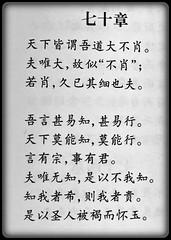 Dao De Jing #70 (buddhadog) Tags: g2haiku needtranslation haikurequest calligraphy chineseprintedcharacters daodejing daoism taoteching laotzu laozi 100vu iphone6 500vu 500blk 5faves 700