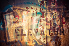 Faded (sniggie) Tags: kentucky louisville waverlyhillssanatorium death decay elevator graffiti impure oldbuilding printedword texture tuberculosishospital 切ない solarium topfloor setsunai