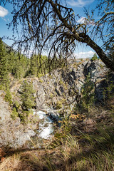 IMG_9539 (RegiShu) Tags: 2019 camping oregon summer us usa wallowalakestatepark joseph unitedstatesofamerica