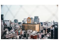 Through the grid (mischabaer) Tags: osaka japan film filmphotography filmisnotdead city kodak ektar100 ektar urban travel analogue analoguephotography analog ranalog leica m42 voigtlander nokton35mm 35mm 35mmfilm nokton leicam