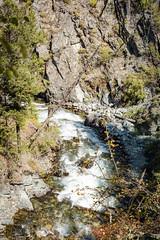 IMG_9540 (RegiShu) Tags: 2019 camping oregon summer us usa wallowalakestatepark joseph unitedstatesofamerica