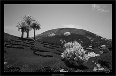 Lanzarote, infrared (Dierk Topp) Tags: a7r bw ilce7r ir sony1635mmvariotessartfef4zaoss canaryislands infrared islascanarias lanzarote monochrom mountains sw sony