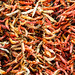 2019 Dried Chillies 3