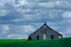 Barn Silhouette (jpeder55) Tags: 2019 landscapephotography palouse washington xt3 fuji fujifilm johnpedersenphoto june landscape nature wheat