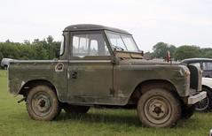 CPP 529B (Nivek.Old.Gold) Tags: 1964 land rover 88 series 2a pickup