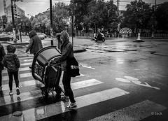 transporter (Jack_from_Paris) Tags: l1013356bw leica m type 240 10770 leicaelmaritm28mmf28asph 11606 dng mode lightroom capture nx2 rangefinder télémétrique bw noiretblanc noir et blanc blackandwhite monochrome monochrom wide angle street regards transporter meuble carrefour