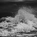 Waves in B&W