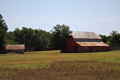 cooke county barn (reluctant_paladin) Tags: texas rural country farm ranch backroads northtexas landscape barn barns antique old