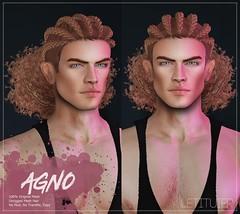 {Letituier} Agno Hair - Men Only Monthly Event!! (Nayomi Gartner) Tags: secondlife slmodels supermodel summer spring hair letituier nayomigartner menonlymonthly