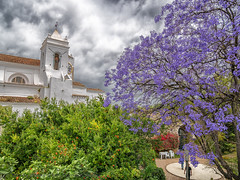 Church and Park in Tavira (WS Foto) Tags: tavira algarve portugal europe eu church park jacaranda blooming bush kirche blühend busch garten igrejadesantamariadocastelo