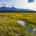 Denali Hwy (ashtenphoto) Tags: alaska mountain range denali wilderness travel explore