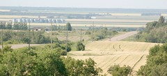 Published in the Manitoba Co-operator - August 22, 2019 (Jeannette Greaves) Tags: manitobacooperator jspubpic 2019 notredamedelourdes escarpement view harvest