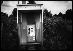 phone box - Xtol stock 10mins (the other Matt Jones) Tags: kodak 2468 blackandwhite film canon10qd xtolstock developer
