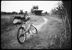 bicycle on track - Xtol stock 9mins (the other Matt Jones) Tags: kodak 2468 blackandwhite film canon10qd xtolstock developer