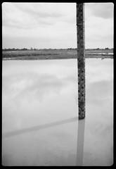 dam level guage - Rodinal stand 1hr (the other Matt Jones) Tags: rodinal stand 2468 kodak film canon10qd 35mmf14 blackandwhite