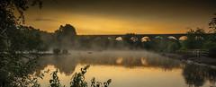 Dawn at Reddish Vale (sean4646) Tags: d500 nikon birds avian nature wildlife reddishvale tamesidestockport cheshire sunrise
