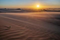 新竹 (王韋証) Tags: taiwan 海邊 沙灘 沙漠 風 夕陽 星芒 沙紋