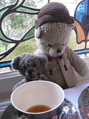 Paddington and Scout have High Tea in the Peacock Room 2. (raaen99) Tags: paddington paddingtonbear paddybear paddy teddy teddybear bear softtoy vintage vintageteddy vintageteddybear vintagetoy handmade softie plush cute cuddly soft scout scoutbear cuddle hug littlebearhug biglittlebearhug knitting knitted knittedtoy fairtrade fairtradebear scouthouse thegables housename queenannehouse federationhouse queenannefederationhouse gascoigneestate baywindow finchstreet finchst queenannestyle queenanne federation window edwardian edwardiana melbourne victoria australia house home 20thcentury twentiethcentury malvern eastmalvern artsandcrafts artsandcraftsmovement artscraftsmovement artscrafts detail interior room tea hightea food drink tearoom restaurant peacockroom cup plate
