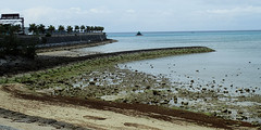 errances okinawiennes (2) (8pl) Tags: plage sable okinawa japon eau roche rochers jetée borddemer bateau couleurs brun vert noir