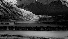 Arthur's Pass National Park. NZ (ndoake) Tags:
