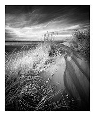 East Head / August 21st (Edd Allen) Tags: landscape clouds infrared blackandwhite bw monochrome eastsussex uk southeast england greatbritain nikond610 nikon d610 zeissdistagon18mm serene bucolic beach westwittering sanddunes
