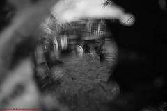 ABSTRACT PLAZA MAYOR  NOVEMBER 2012-Madrid (FRANCISCO DE BORJA SÁNCHEZ OSSORIO) Tags: blackandwhite blancoynegro bw love light luz life lovely españa exposure enfoque encuadre exposicion madrid moment plazamayor flechazo focus focuspoint foco framing bokeh beauty belleza nature naturaleza nice color colour composition composición colourtemperature timeexposure tiempodeexposición temperaturadecolor amor arrow autumn otoño instant instante invierno verano vida view passion photo pasión primavera photostreet spring shot summer streetphoto street detalle detalles detail details desenfoque disparo divertido delicado delicate dof depthoffield