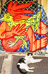 Friends Not Food (kirstiecat) Tags: athens greece streetart street canon europe graffiti vegan vegetarian cat chat gato katze γάτα colors environment food feline kitty streetcat animal caturday