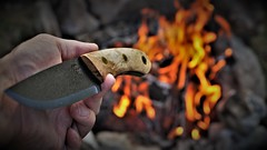 Made for adventure (Bushcraft.Eure) Tags: bushcraft knives customknives bushcraftknives handmade knife knifemaking sheath outdoor cuteure wetterlings spoon woodenspoon tools tool outdoortools bushcrafttools scandigrind feather leather pouch leatherpouch woodworking couteau coutellerie coutelier frenchknife frenchknifemaker knifemaker bushcrafttool outdoortool carving eure normandie breuilpont sony ilce6000 e f4 sonyilce6000 maple messer loveless oss sel18105g hunter bushcrafter backpacker hikker camper prepper fire campfire