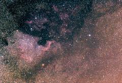 So many stars... ([-ChristiaN-]) Tags: astro astrophotography deneb north america pelican nebula nebulae space cosmos sky heavens wide field weltraum kosmos himmel sommer pelikan sigma180mm35 sigma stars star kepler backyard clouds dust gas astronomy astronomie sterne astrometrydotnet:id=nova3616839 astrometrydotnet:status=solved