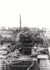 """12. SS-Panzer-Division """"Hitlerjügend"""" (CombatOfficiel) Tags: waffenss history histoire historia secondeguerremondiale 2gm ww2 wwii worldwar2 worldwarii"""